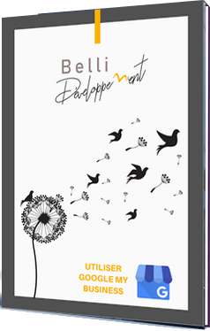 ebook belli-developpement